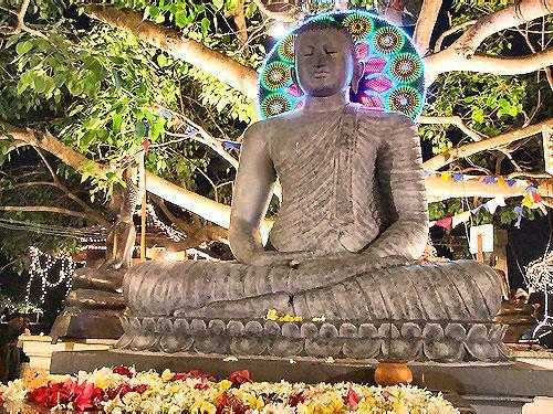 Budda festa dvesack